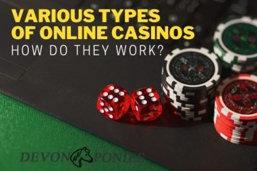 Various Types of Online Casinos – How Do They Work